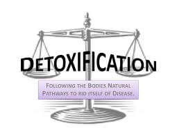 detoxification programs by healing therapeutics
