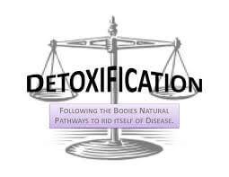 detoxification programs by healing therapeutics